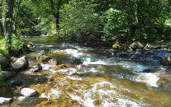 Hargita megye, Ivó pataka