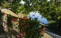 Baja,Sugovica,út,balkon láda