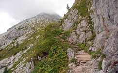 Berchtesgadeni Alpok - A Watzmannhaus felé