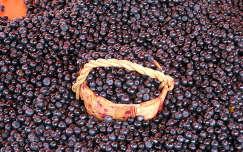 áfonya gyümölcs gyümölcskosár