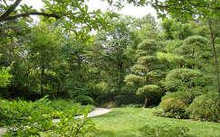 Japan kert Rockford Illinois ,USA