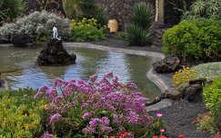 César Manrique ház kertje, Lanzarote