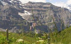 Jungfrau,  Svájc