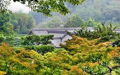 Ősz, Ginkakuji templom, Kiotó, Japán