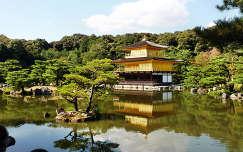 világörökség tükröződés japán fa ősz fenyő tó kinkakuji templom kertek és parkok kiotó