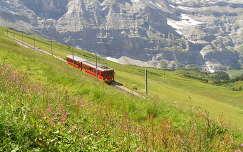 Jungfrau vasútja,Svájc