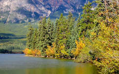 Ősz, Jasper Nemzeti Park, Alberta, Kanada