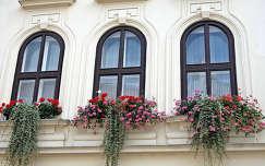 ablakok, virágokkal