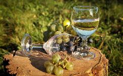 bor gyümölcs ital szőlő ősz