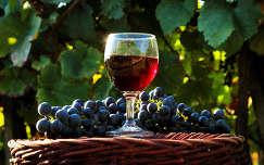 Vörös boros naplemente...