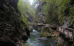 Vintgar szurdok - Szlovénia