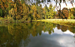 Magyarország, Vácrátót, Arborétum