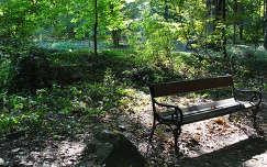 Őszi pad, Vácrátót, Arborétum, Magyarország
