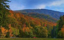 Szalajka-völgy nagy rét (HDR)