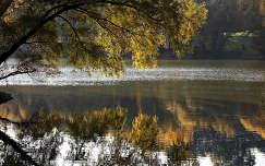 őszi tükröződés