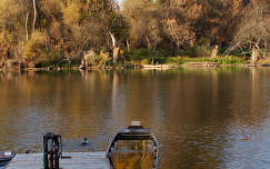 magyarország ősz stég és moló mártély csónak folyó