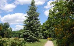 Fürst Pückler park