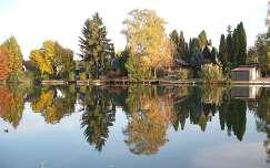 Szarvas -Körös part és tükörképe ősszel - fotó: Kőszály