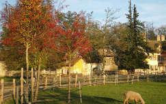 Versailles osszel, Kis Trianon park, A kiralyno tanyaja, Gazdasag