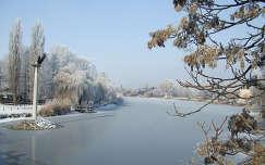 Szarvas, Zúzmarás Körös part. Fotó: Csonki