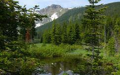 Canada,Waterton National Park