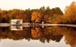 Debreceni csónakázó-tó ősszel