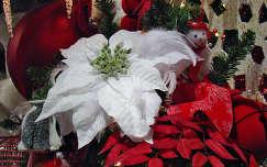 mikulásvirág karácsonyi dekoráció karácsony