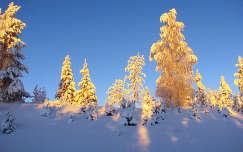 Téli napfelkelte, Svédország