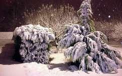 Első hó az idei télen