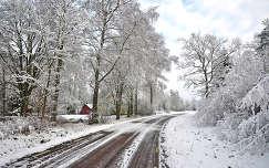 Nyaraló.....télen!! Svéd.o-ban