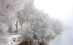 Tél a Ferenc-csatornánál, Dávod, Magyarország