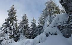 Erdely,havas táj