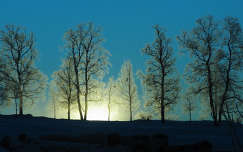 Téli napkelte, Svédország