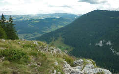 Kis-Cohard - Erdély