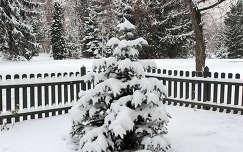 2012-ben sem maradt el a tél. :)