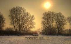 Téli reggel a Ferenc-csatornánál, Dávod, Magyarország