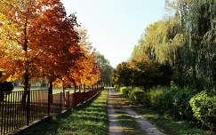 Magyarország, Dunaújváros, szabadstrand ősszel