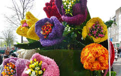 Haarlem, Holland, Flowershow