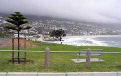 Hout Bay, Délafrika
