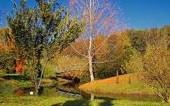 Arborétum Erdőtelek