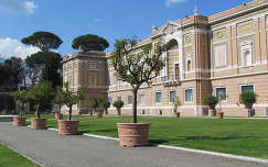 Múzeumkert, Vatikán