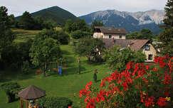 Puchberg am Schneeberg látképe
