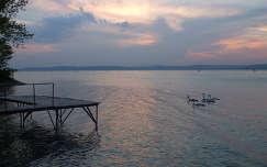 magyarország hattyú stég és moló tó napfelkelte balaton vizimadár