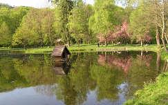 Beregvári kastély parkja, Ukrajna