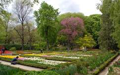 Botanikus Kert, Madrid