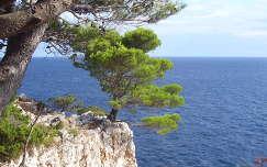 Dugi Otok (Horvátország)