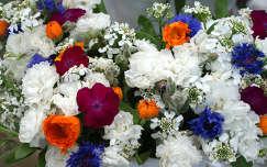 körömvirág szegfű nyári virág búzavirág virágcsokor és dekoráció