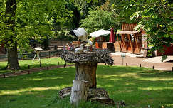 madár állatkölyök madárfióka gólya