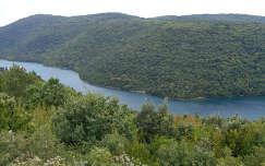 Horvárország - Limski fjord