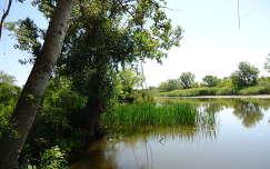 Tisza-tó - Poroszló